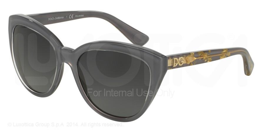 Dolce Gabbana 4250/2921t3 1uzV6NLzj