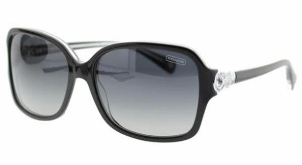 dd15a8d443e1c Coach FRANCES HC8009 L020 Sunglasses