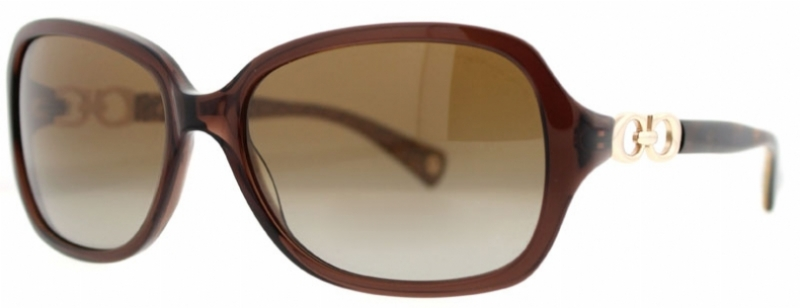 dba1e08cd0d Coach Beatrice Sunglasses Black